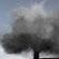 Smoking Tree 烟雾树