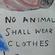 No Animal Shall Walk on 2 Legs 动物不该两条腿走路